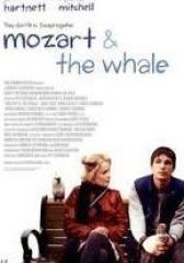 莫扎特与鲸鱼(影视)