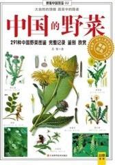 中国的野菜(仅适用PC阅读)