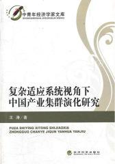 复杂适应系统视角下中国产业集群演化研究