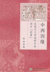 """中西因缘:近现代文学视野中的西方""""经典""""2版(仅适用PC阅读)"""