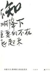 异想天开: 蔡国强与农民达芬奇(试读本)