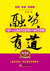 融资有道:中国中小企业融资风险案例解析与融资管理策略(精华版2)