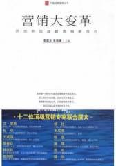 营销大变革:开创中国战略营销新范式(试读本)