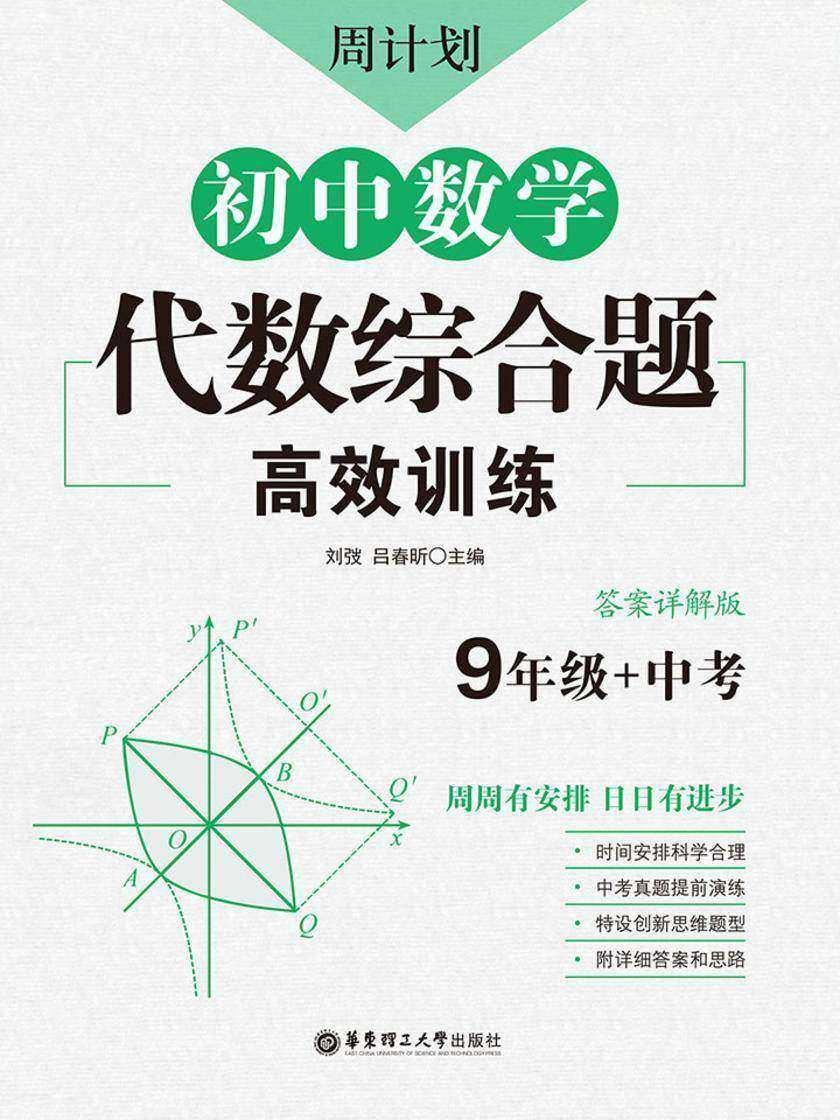 周计划:初中数学代数综合题高效训练(9年级+中考)