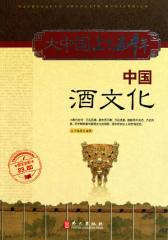 大中国上下五千年:中国酒文化(图文全彩)
