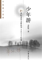 少年游——21世纪文学之星丛书2011年卷(试读本)