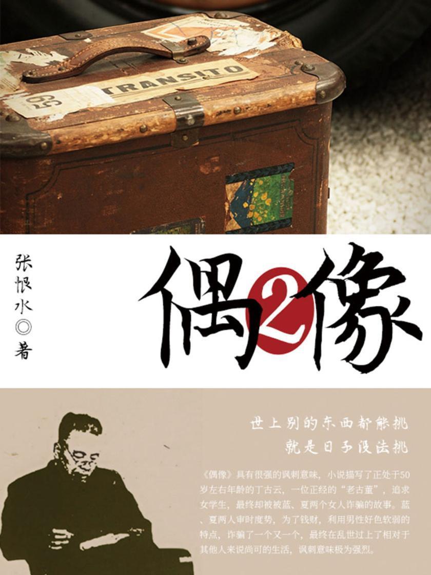 张恨水经典:偶像(2)