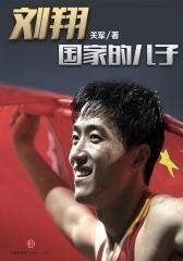 刘翔:国家的儿子