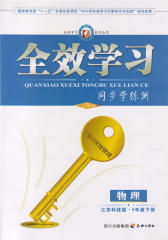 全效学习系列丛书:物理·江苏科技版·9年级下册(仅适用PC阅读)