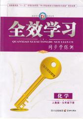*学习系列丛书:化学·人教版·九年级下册(仅适用PC阅读)