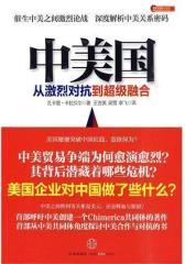 中美国:从激烈对抗到超级融合(试读本)