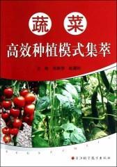 蔬菜高效种植模式集萃