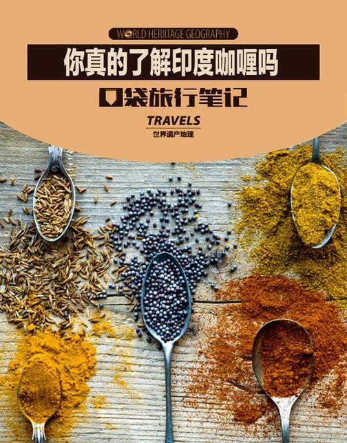 你真的了解印度咖喱吗(世界遗产地理·口袋旅行笔记)(电子杂志)