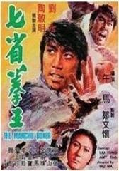 七省拳王 国语(影视)