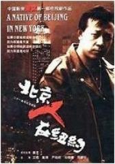 北京人在纽约(影视)