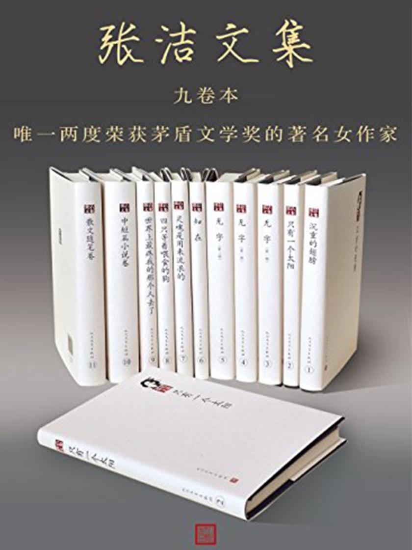 张洁文集:全9册