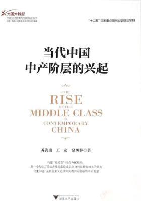 当代中国中产阶层的兴起(大国大转型中国经济转型与创新发展丛书)