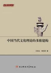 中国当代文化理论的多维建构