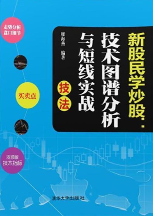 新股民学炒股:技术图谱分析与短线实战技法