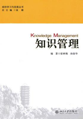 知识管理(组织学习与发展丛书)
