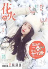 花火影像A-2017-01期(电子杂志)