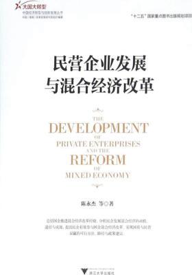 民营企业发展与混合经济改革(大国大转型中国经济转型与创新发展丛书)