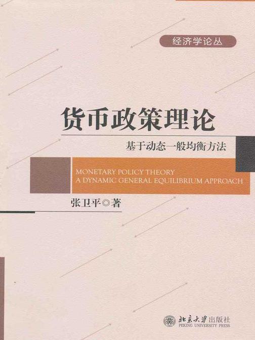 货币政策理论:基于动态一般均衡方法(经济学论丛)