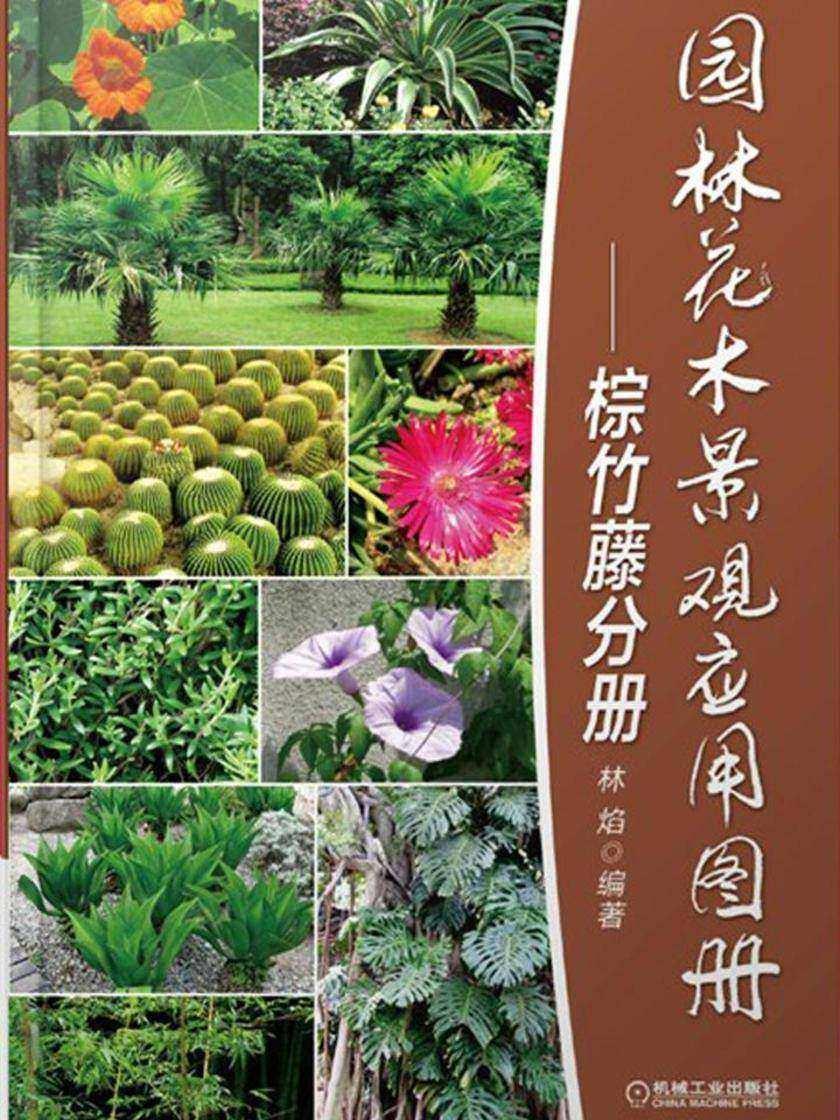 园林花木景观应用图册-棕竹藤分册