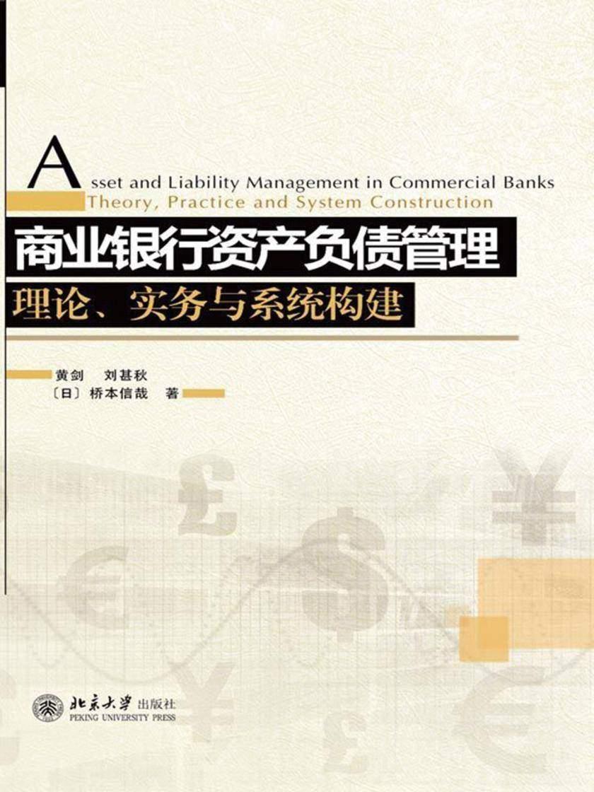 理论实务与系统构建:商业银行资产负债管理