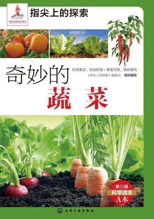 奇妙的蔬菜