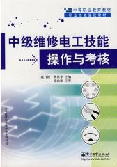 中级维修电工技能操作与考核(仅适用PC阅读)