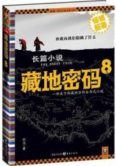 藏地密码8(试读本)