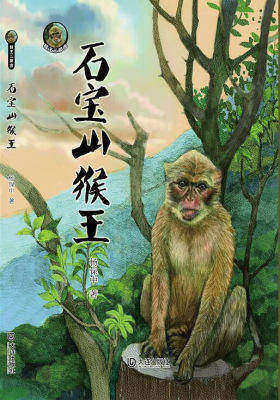 猴王三部曲·石宝山猴王