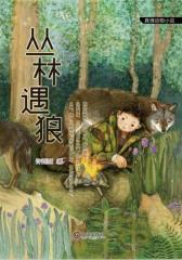 真情动物小说·丛林遇狼