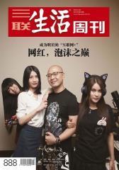 三联生活周刊·网红,泡沫之巅(2016年22期)(电子杂志)