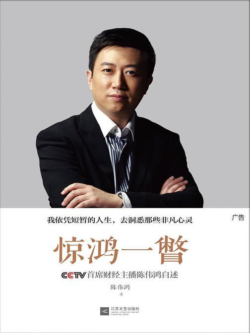 惊鸿一瞥:CCTV首席财经主播陈伟鸿自述