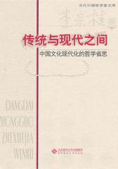 传统与现代之间:中国文化现代化的哲学省思