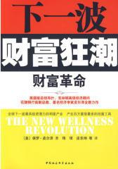 下一波财富狂潮:财富革命(试读本)
