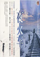 夜火车(试读本)