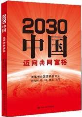 2030中国:迈向共同富裕(试读本)