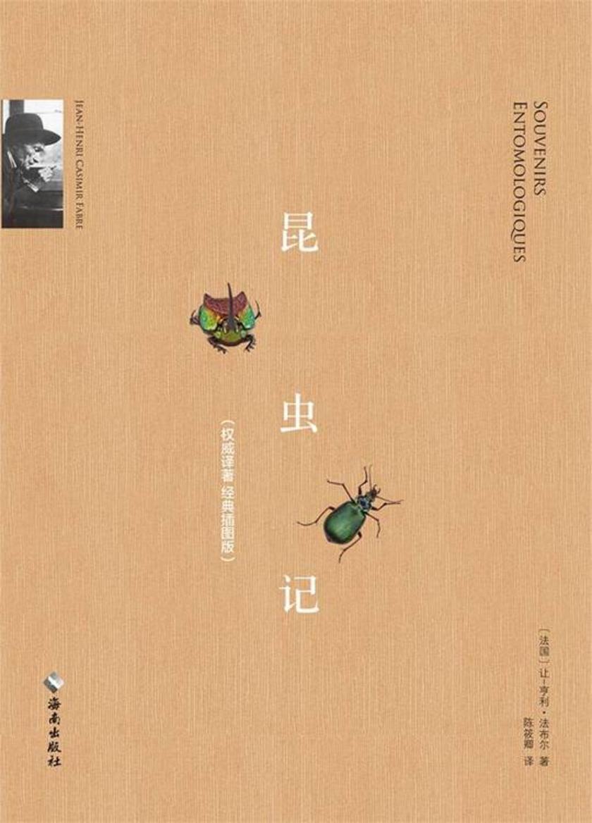 昆虫记(慢读系列,经典译著,精美插图版)