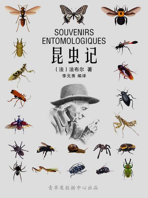 昆虫记(经典世界名著)