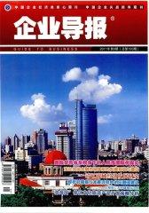 企业导报 半月刊 2011年05期(电子杂志)(仅适用PC阅读)