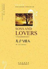 儿子与情人
