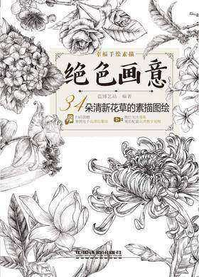 绝色画意:34朵清新花草的素描图绘