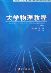 大学物理教程(下册)(仅适用PC阅读)