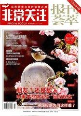 非常关注 月刊 2011年03期(电子杂志)(仅适用PC阅读)