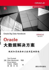Oracle 大数据解决方案(试读本)(仅适用PC阅读)