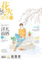花火A-2018-2期(电子杂志)