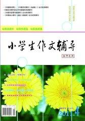 小学生作文辅导·教师适用 月刊 2011年04期(电子杂志)(仅适用PC阅读)